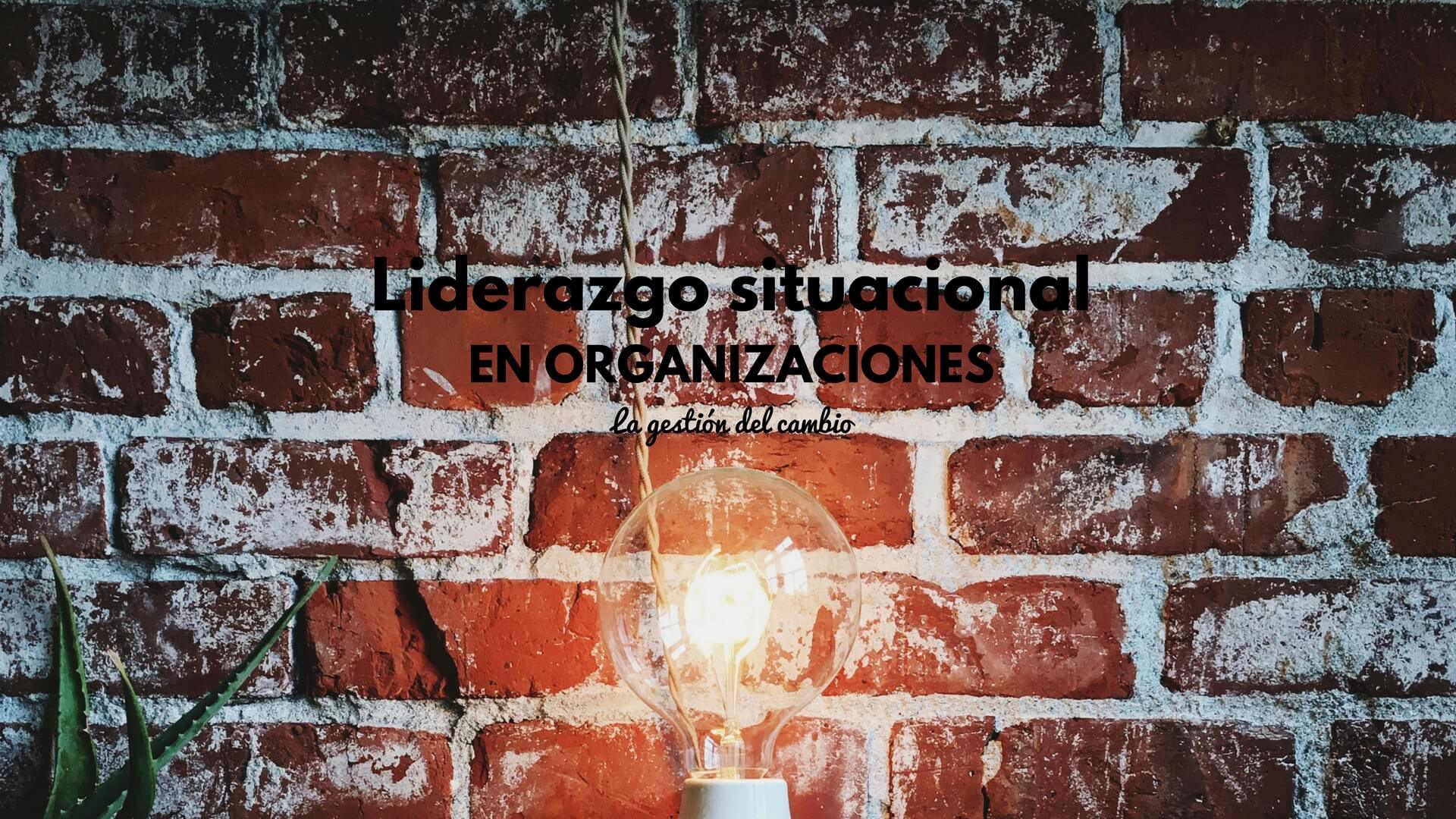 Liderazgo situacional en las organizaciones: cómo liderar la gestión del cambio